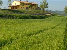 COUNTRY HOUSE SANT'ANGIOLINO(Urbania)