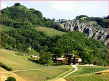 CORTE D'AIBO(Monteveglio)
