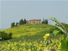 Agriturismo Siena : BONELLO(Pienza)
