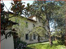 Agriturismo Toscana : BORGO DEI RICCI(Monte Oriolo)