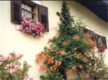 ROTHENHOF(Montagna)