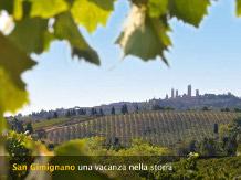 CESANI(San Gimignano)