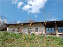 SERE DI SOSTA(Bagnolo Piemonte)