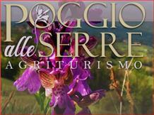 POGGIO ALLE SERRE(Gallinaro)