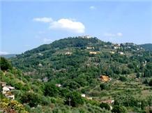 IL TORRINO(Fiesole)
