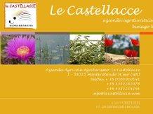 LE CASTELLACCE(Monterotondo Marittimo)