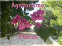 PALESE(Ugento)