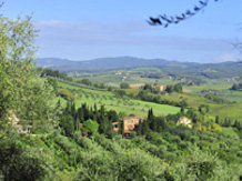 Agriturismo Italia : MALAFRASCA(Siena)