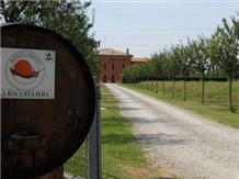 LA BACCELLIERA(Modena)