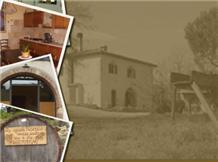 POLVERAIA(San Gimignano)