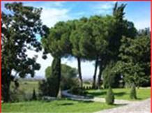 TENUTA DI PIETRA PORZIA(Frascati)