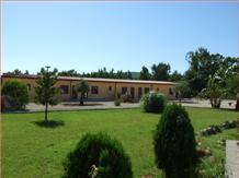 CORALLO(Alghero)