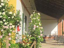 Agriturismo Venezia : AGRITURISMO LEMENE(Caorle)