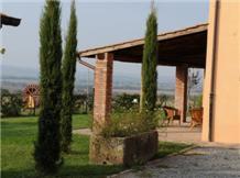FERENTO E IL CASTAGNO(Viterbo)